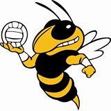 Jacket Volleyball Mascot